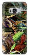 Birdland Galaxy S8 Case
