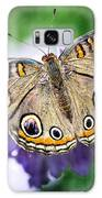 Buckeye Butterfly  Galaxy S8 Case