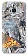 Butterfly Rock Galaxy S8 Case