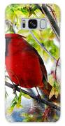 Cardinal 1 Galaxy S8 Case