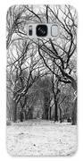 Central Park 1 Galaxy S8 Case