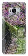 Cherry Blossom Walk Galaxy S8 Case