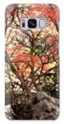 Cherry Blossoms II Galaxy S8 Case