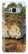China Cove, Point Lobos Galaxy S8 Case