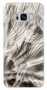 Dandelion Galaxy S8 Case