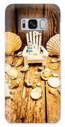 Deckchairs And Seashells Galaxy S8 Case