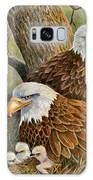 Decorah Eagle Family Galaxy S8 Case