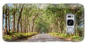 Eucalyptus Tree Tunnel - Kauai Hawaii Galaxy S8 Case