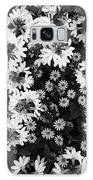 Floral Texture In Black And White Galaxy S8 Case