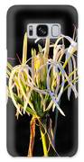 Flowering In Florida Galaxy S8 Case