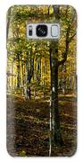 Forest Floor Two Galaxy S8 Case
