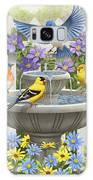 Fountain Festivities - Birds And Birdbath Painting Galaxy S8 Case