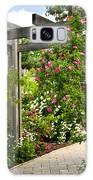 Garden With Roses Galaxy S8 Case