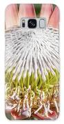 Giant Pink King Protea Flower Galaxy S8 Case