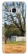 Horse And Hay Galaxy S8 Case