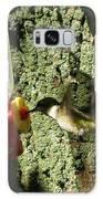 Humming Bird Galaxy S8 Case