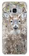 Hunters Dream Galaxy S8 Case