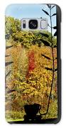 Inside Looking Outside At Fall Splendor Galaxy S8 Case