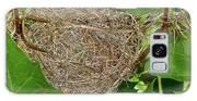 Intricate Nest Galaxy S8 Case
