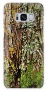 Island Moss Galaxy S8 Case