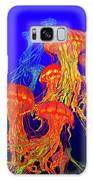 Jellys4 Galaxy S8 Case