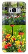 Keukenhof Ornamental Garden. Galaxy S8 Case