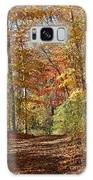 Leaf Covered Path Galaxy S8 Case
