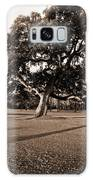 Leaning Tree Galaxy S8 Case
