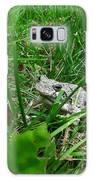 Little Frog Big Voice Galaxy S8 Case