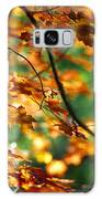 Lost In Leaves Galaxy S8 Case