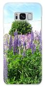 Lupins And Flocks Galaxy S8 Case