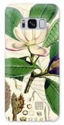 Magnolia Hodgsonii Galaxy S8 Case