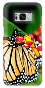 Monarch Butterfly At Lunch With 2 Box Elder Bugs Galaxy S8 Case
