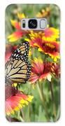 Monarch On Blanketflower Galaxy S8 Case