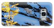 Mountain Goat And Larches Galaxy S8 Case