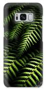 Nature In Minimalism Galaxy S8 Case by Jorgo Photography - Wall Art Gallery