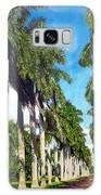 Palms Galaxy S8 Case