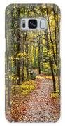 Path In Fall Forest Galaxy S8 Case