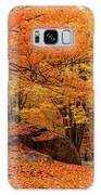 Path Through New England Fall Foliage Galaxy S8 Case