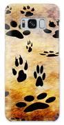 Paw Prints Galaxy S8 Case