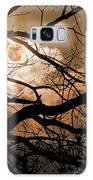 Perigee Moon In The Trees Galaxy S8 Case