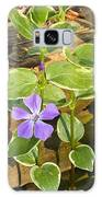 Periwinkle Galaxy S8 Case