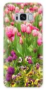 Purple And Pink Tulips In Canberra In Spring Galaxy S8 Case