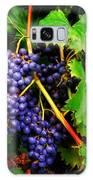 Grapes Galaxy S8 Case