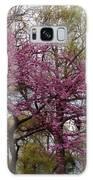 Purple Spring Trees Galaxy S8 Case