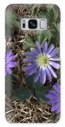 Purple Yard Flowers Galaxy S8 Case