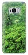 Rainforest Maui Galaxy S8 Case