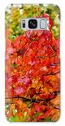 Red Fall Leaves Galaxy S8 Case