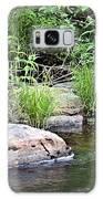 River At Duchesne Falls Galaxy S8 Case