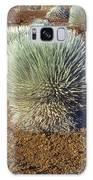 Silversword Wildflower Galaxy S8 Case